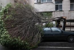 هشدار در خصوص وقوع صاعقه و طوفان تندری