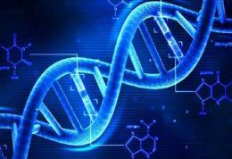 امکان اصلاح DNA میسر شد