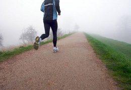 تاثیر پذیری بدن از ورزش