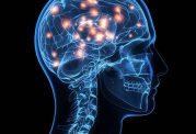 راهکاری جدید برای تشخیص بیماری آلزایمر