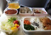 سرو غذا در خطوط هوایی و دنیای پشت پرده آن