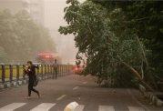 وزش باد شدید پدیده غالب در کشور