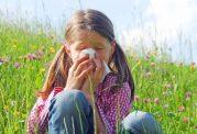 آلرژی فصلی خود را با چه خوراکی هایی کنترل کنیم؟