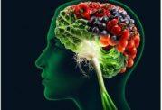 6 نوشیدنی برای تقویت مغز