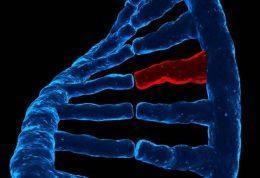 ارتباط افسردگی با ژنتیک