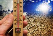 مهاجرت جانوران به دلیل تغییرات دمایی زمین