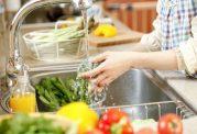اهمیت گندزدایی سبزی خوردن