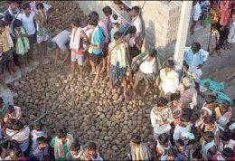جشنی عجیب و غریب در هند