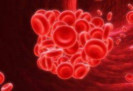 محصولات غذایی رقیق کننده خون