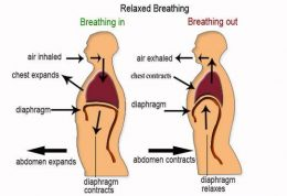 اهمیت تنفس عمیق برای بدن
