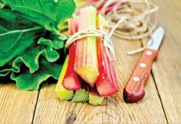 گیاه مناسب برای افراد گرم مزاج