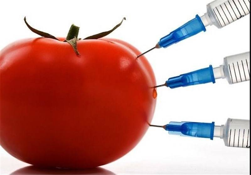 گوجه و این همه خواص طلایی برای حفظ و تقویت انسان
