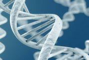 مداخله ژنتیکی برای مقابله با مرگ غیر منتظره