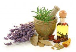 آشنایی با برخی گیاهان دارویی! گیاهان دارویی را دور نریزید