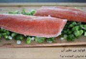 ماهی قزل آلا و فواید بی نظیر آن