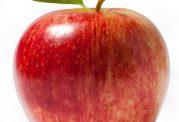از بین بردن یبوست با کمک سیب