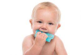محصولات هومیوپاتی دندان و سمی به نام بلادونا