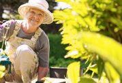 مزایای درختکاری برای افراد سالمند