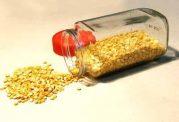 لپه برای بیماران دیابتی مفید است/ تغذیه بیماران دیابتی