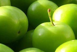 حساسیت به گوجه سبز
