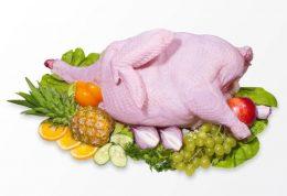 گوشت بوقلمون چه فوایدی برای بدن انسان دارد؟