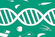 آیا می دانید که رژیم غذایی، ژن ها را تغییر می دهد؟