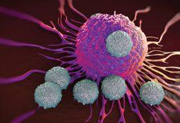 محصولات گیاهی برای مقابله با سلول های سرطانی