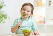 برنامه غذایی کودک 2 تا 3 ساله