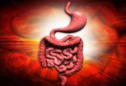 روزه گرفتن و ترمیم پانکراس و بهبودی دیابت