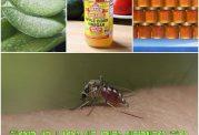 دفع حشرات با محصولات طبیعی و گیاهی