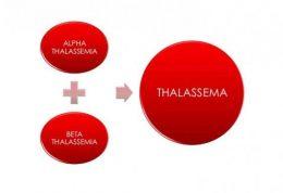 بررسی بیماری تالاسمی