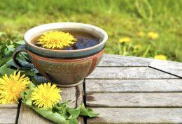 نحوه مصرف گل قاصدک