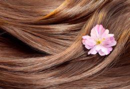 10 نکته در مورد تاثیر روغنهای گیاهی در مراقبت از مو
