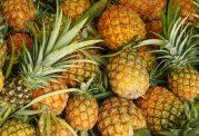 تقویت سیستم ایمنی بدن با آناناس