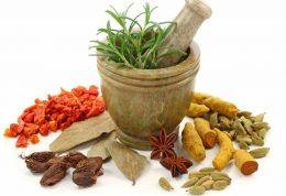 تاثیر داروهای گیاهی بر سلامتی