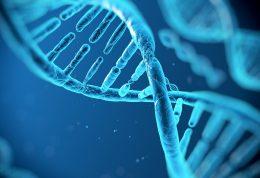 می دانید 75 درصد DNA انسان بی فایده است؟