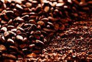 کاکائو معجزه ای از دل طبیعت برای درمان بیماری ها