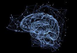 با مواد غذایی حاوی لوتئین مغز خود را جوان نگه دارید