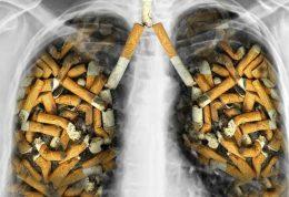تاثیر دخانیات در ابتلا به سرطان ریه