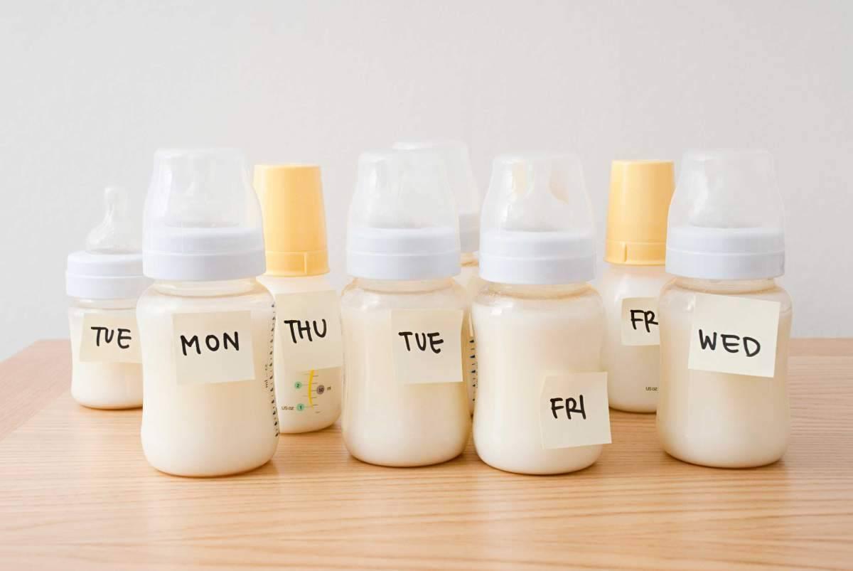 وضعیت صحیح شیر دادن خواص سلامتی شیر مادر تاثیر شیردهی مادر بر سلامت کودک تاثیر شیر مادر بر سلامت نوزاد وضعیت صحیح شیر دادن خواص سلامتی شیر مادر تاثیر شیردهی مادر بر سلامت کودک تاثیر شیر مادر بر سلامت نوزاد