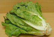 آشنایی با سبزیجاتی که چربی سوز هستند