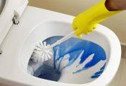 روش تمیزکردن توالت فرنگی