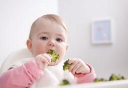 دانستنی های در خصوص تربیت کودکان از تولد تا 7 سالگی