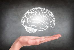 راهکارهای موثر برای جلوگیری از پیر شدن مغز