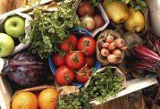 سبزیجات منبع مفیدی برای تامین نیازهای بدن