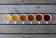 استفاده از چای سبز را ترجیح می دهید یا چای سیاه؟