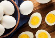 خواص پودر سفیده تخم مرغ را بدانیم