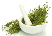 فواید استفاده از گیاه آویشن