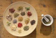 گیاهانی که خواص زیادی برای لوزالمعده دارند