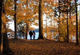 مقابله با افسردگی با پیاده روی در پاییز